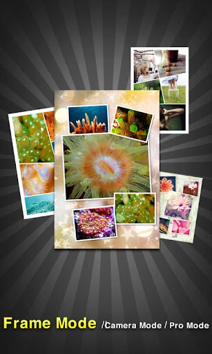 PicFrame - Photo Collage for PC