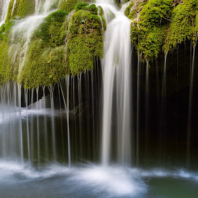 Liquid fangs by Lucian Satmarean - Nature Up Close Water ( water, green, waterfall, long exposure, flow, spring )