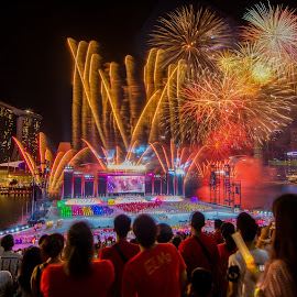 NDP 2014 firework  by Jun Hao - Abstract Fire & Fireworks ( firework,  )