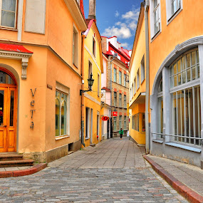 The narrow street by Irena Gedgaudiene - City,  Street & Park  Neighborhoods ( window, street, house, city )