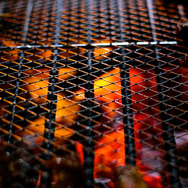 barbecue by Aaron Lee - Food & Drink Meats & Cheeses ( satay, chicken, grill, barbecue, fire )