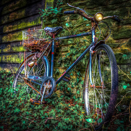 Scrap Push bike  by Nick Foster - Transportation Bicycles ( old, lost, bike, push bike, scrap, abandoned )