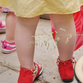 Red Shoes by Cheryl Korotky - Babies & Children Hands & Feet ( shoes, red shoes, a heartbeat in time photography, children's sandals )