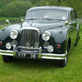 by Bill Rennie - Transportation Automobiles ( jaguar, car, classic car, vintage, transport, classic )