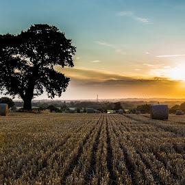 Early Morning Sun by Richard Hoar - Landscapes Prairies, Meadows & Fields ( field, wide angle, hay, sunrise, landscape, Earth, Light, Landscapes, Views,  )