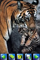 Screenshot of Wild animal Wallpaper