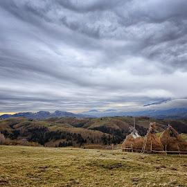 Sirnea, Fundata - Brasov 25.10.2014 by Mirela Savu - Landscapes Prairies, Meadows & Fields