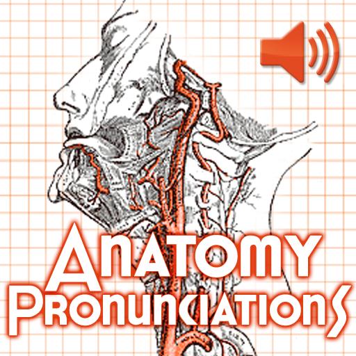 Anatomy Pronunciations LOGO-APP點子