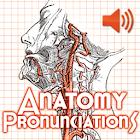 Anatomy Pronunciations icon