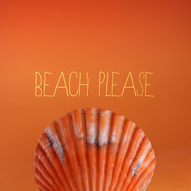 Beach please by Dave Bernard - Typography Words