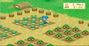 Harvest Moon: Boy & Girl