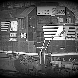 Train Engine by Constance S. Jackson - Transportation Trains ( ns, engine, black and white, railroad, horse, train )