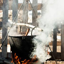 Pork Festival in Romania  by Carla Coanda - Food & Drink Cooking & Baking ( balvanyos, pork, romania, prepared, products, swine, fire, pig, custom )