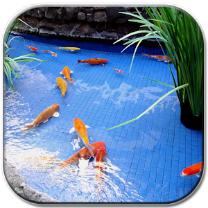 App koi fish pond ii apk for windows phone android games for Koi pond app