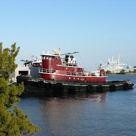 Tugboat on the St. Johns by Jonna Flynn - Transportation Boats ( jacksonville, tugboat, florida, st johns, river )