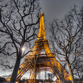 Eiffel Tower @ Night 5 by Ben Hodges - Buildings & Architecture Statues & Monuments ( paris, eiffel tower, colour pop, europe, park, hdr, cloud, trees, france, night, travel )