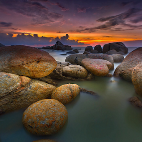 the rock by Dody Herawan - Landscapes Sunsets & Sunrises ( coral, sunset, rock, beach, seascape )