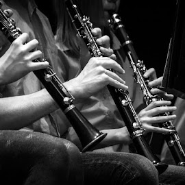 hands in B major by Laci Molnar - People Musicians & Entertainers ( music, hands, bw, clarinet, , object, musical, instrument )