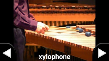 Screenshot of Music Instruments - English