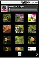 Screenshot of Flickr PF
