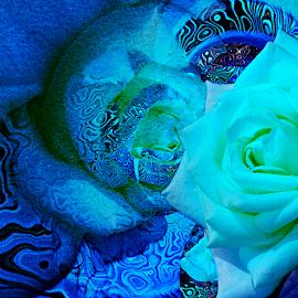 RHAPSODY IN BLUE by Carmen Velcic - Digital Art Abstract ( abstract, rhapsody, blue, digital roses, flowers, digital )