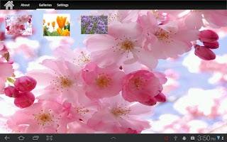 Screenshot of My Stills  for Tablet
