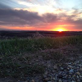 by Kimberly Mehrer - Landscapes Prairies, Meadows & Fields ( sunset, sask, exploresask, farmlife, landofthelivingskies )