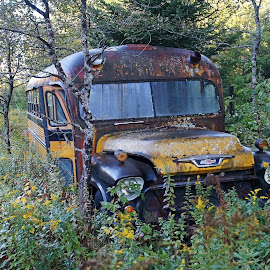 Retired by Mark Mynott - Transportation Other ( old vehicle, antique bus, meadow, transportation, rust, abandoned )