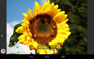 Screenshot of Digital Photo Frame Premium