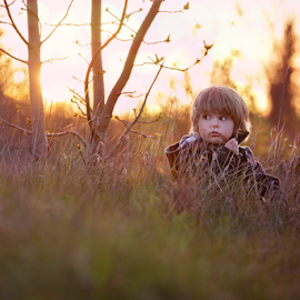 lil pud by Chinchilla  Photography - Babies & Children Toddlers ( grass, sunset, toddler )