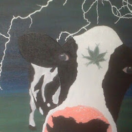 Sacred cow by Jessica Anderson - Painting All Painting
