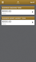 Screenshot of BNY Mellon Business Banking