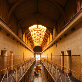 Old Melbourne Gaol by Michael Coleman - Buildings & Architecture Other Interior ( melbourne, historical, disused, jail, gaol )