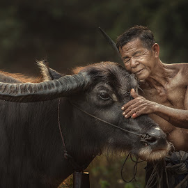 R u ready for work? by Jakkree Thampitakkul - Uncategorized All Uncategorized ( tropicalpeople, home, animals, buffalow, tropical, thailand, tropicalweather, travel, #garyfongpets, love, #showusyourpets, farmer, pet, tropicalcountrys, sakonnakhon )
