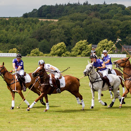 Charity Polo by Sheena True - Sports & Fitness Other Sports