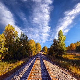 One More Ride by Phil Koch - Transportation Railway Tracks ( vertical, photograph, rails, fine art, yellow, transportation, travel, ountry, leaves, love, sky, nature, autumn, flowers, light, flower, orange, agriculture, horizon, portrait, rural, environment, dawn, season, serene, outdoors, trees, floral, inspirational, natural light, wisconsin, ray, railroad, landscape, phil koch, sun, photography, blue sky, horizons, inspired, office, clouds, park, green, back light, tracks, scenic, morning, shadows, wild flowers, field, red, color, sunset, peace, fall, meadow, landscapephotography, beam, earth, sunrise, landscapes, mist )