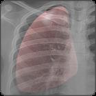 Breathe - Live Wallpaper icon