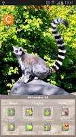 Screenshot of GO Launcher Zoo Animals Theme