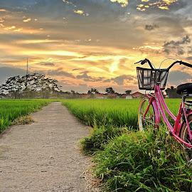 by Deden Mulyadi - Transportation Bicycles