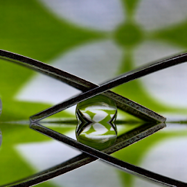 by Dipali S - Artistic Objects Other Objects ( reflection, fork, spheres, refraction )