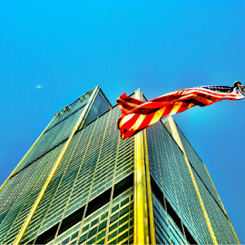 Willis tower by Brock Willis - City,  Street & Park  Skylines ( love, tower, illinois, flag, sky, nature, blue, me, willis, chicago, like, usa )