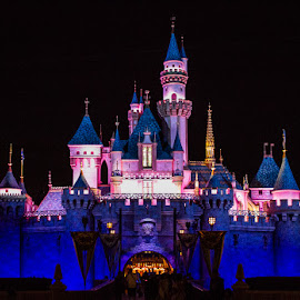 Sleeping Beauty's Castle by Nicole Nichols - City,  Street & Park  Amusement Parks ( nighttime, sleeping beauty castle, disneyland, castle )