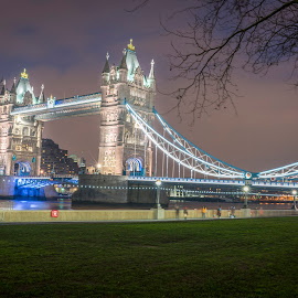 Tower Bridge at night by Benjamin Tucker - Buildings & Architecture Public & Historical ( england, london, tower bridge, nikon d810, sigma 35mm f1.4 art lens )