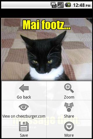 random-lolcat for android screenshot