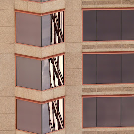One line of reflection. by Dan Dusek - Buildings & Architecture Office Buildings & Hotels ( reflections, windows, office building, architecture, design,  )