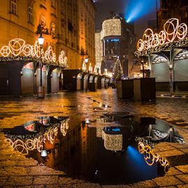 Vienna by Mihai Popa - City,  Street & Park  Street Scenes (  )