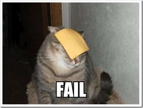 Funny cat picture - cat with post-it on the head.