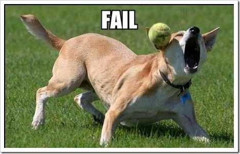 fail-dog-ball