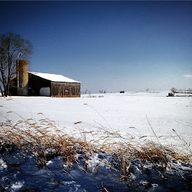 Winter Farm Land by Bobby Hudson-Schnarr - Landscapes Prairies, Meadows & Fields