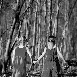 A Walk through the Woods by Jason Longbrake - Babies & Children Children Candids ( columbus ohio, children, woods, jason longbrake photography, holding hands )